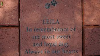 LEILA In remembrance of our most sweet and loyal dog. Always in our hearts.