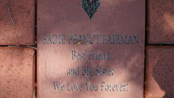 SADIE PEANUT FAIRMAN Best Friend and Big Sister We Love You Forever!