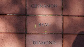 Cinnamon - Beau - Diamond
