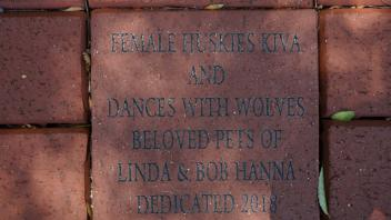 FEMALE HUSKIES KIVA AND DANCES WITH WOLVES BELOVED PETS OF LINDA & BOB HANNA DEDICATED 2018