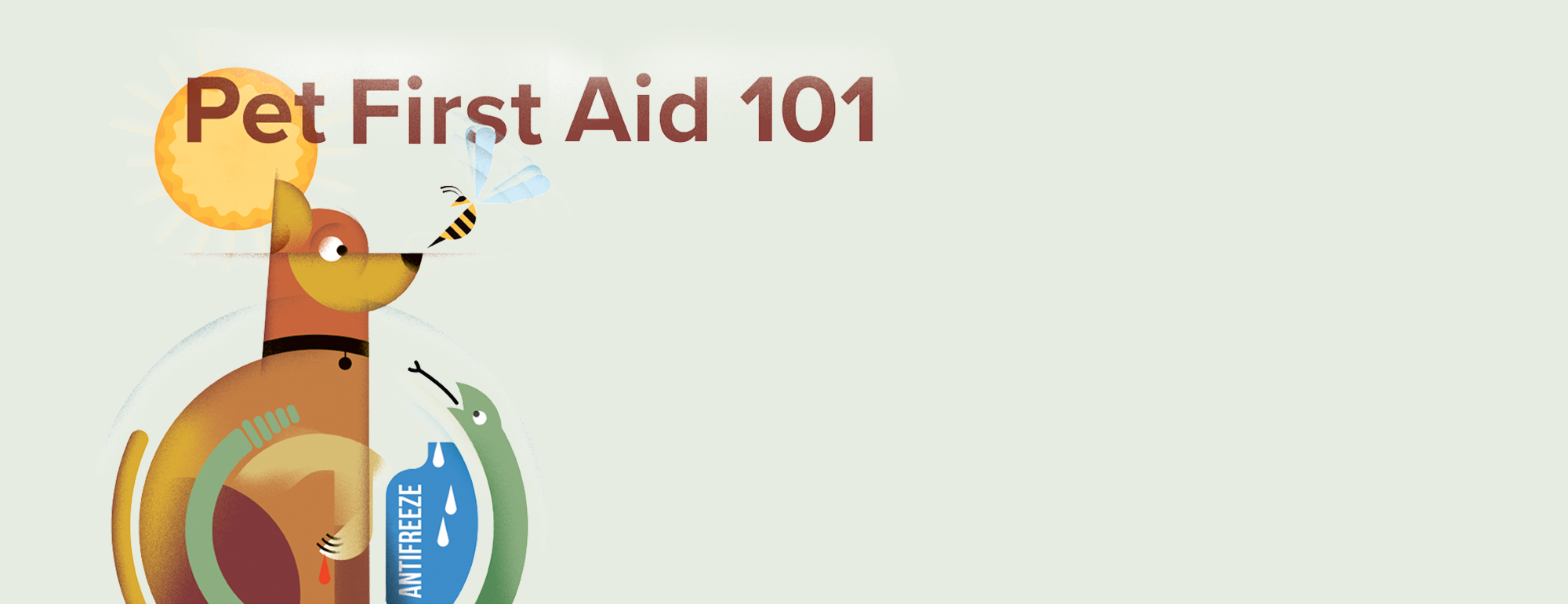 pet first aid illustration
