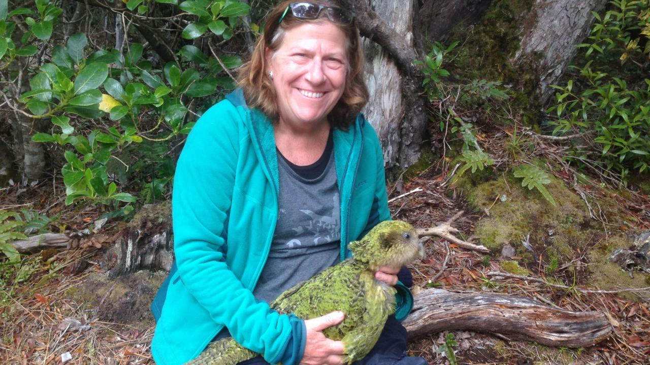 UC Davis veterinarian Joanne Paul-Murphy with kakapo parrot