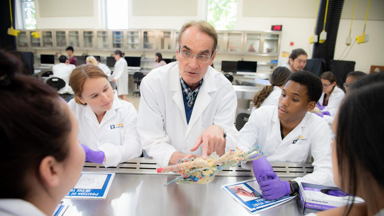 Dr. Kent E. Pinkerton, Professor of Anatomy, Physiology and Cell Biology, teaches an anatomy lab to participants of the Summer Enrichment Program (SEP) using heart specimens preserved by plastination in the anatomy laboratory at the University of California School of Veterinary Medicine.