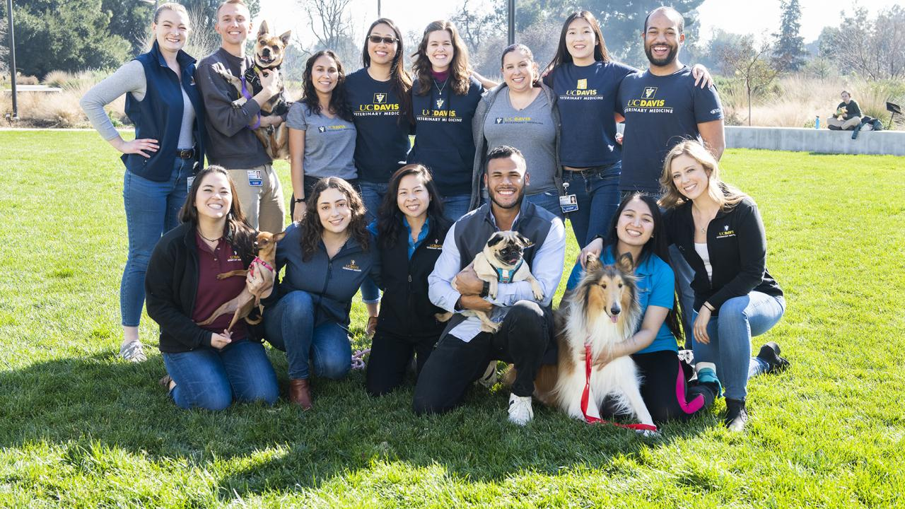 Class of 2021 veterinary student Ferdie Liard-Ramirez with fellow veterinary students and their dogs.