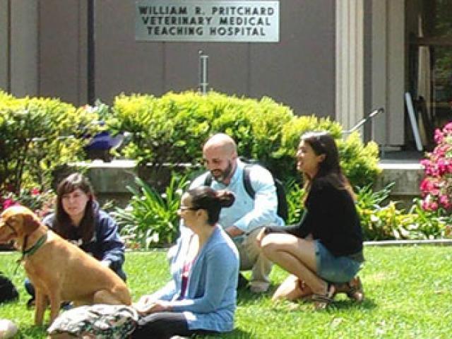 Student Life | School of Veterinary Medicine