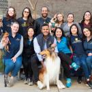 group of UC Davis veterinary students
